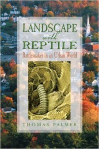Cover shot of Landscape with Repile